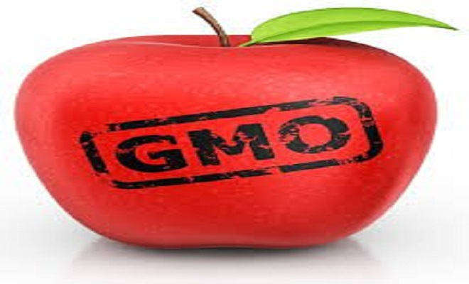 GlobalResearchgmo-apple