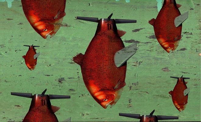 WBfish-aspx