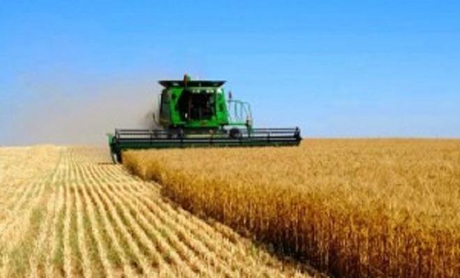 NEO.orgUkraine-agriculture-300x169