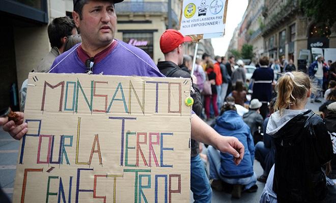 AFPPhotoRemyGabaldamonsanto-3.si