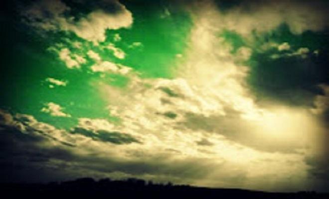 ActivsitPostgreenworld