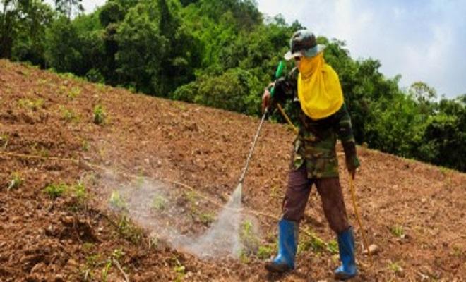 GlobalResearchpesticides_herbicide_man_spray_735_350-2-400x190