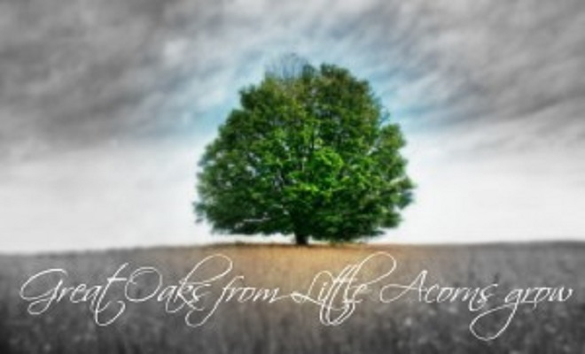 CorbettReportgreat-oaks-300x187