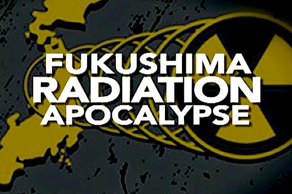 Fukushima Shot 2017-02-08 at 5.40.31 PM