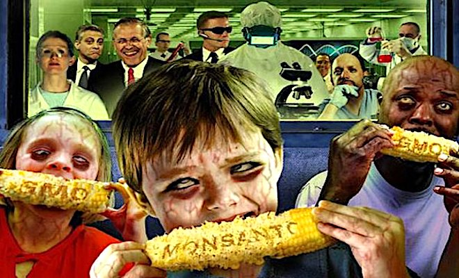 Monsanto-GMO-corn-Dees-illustration